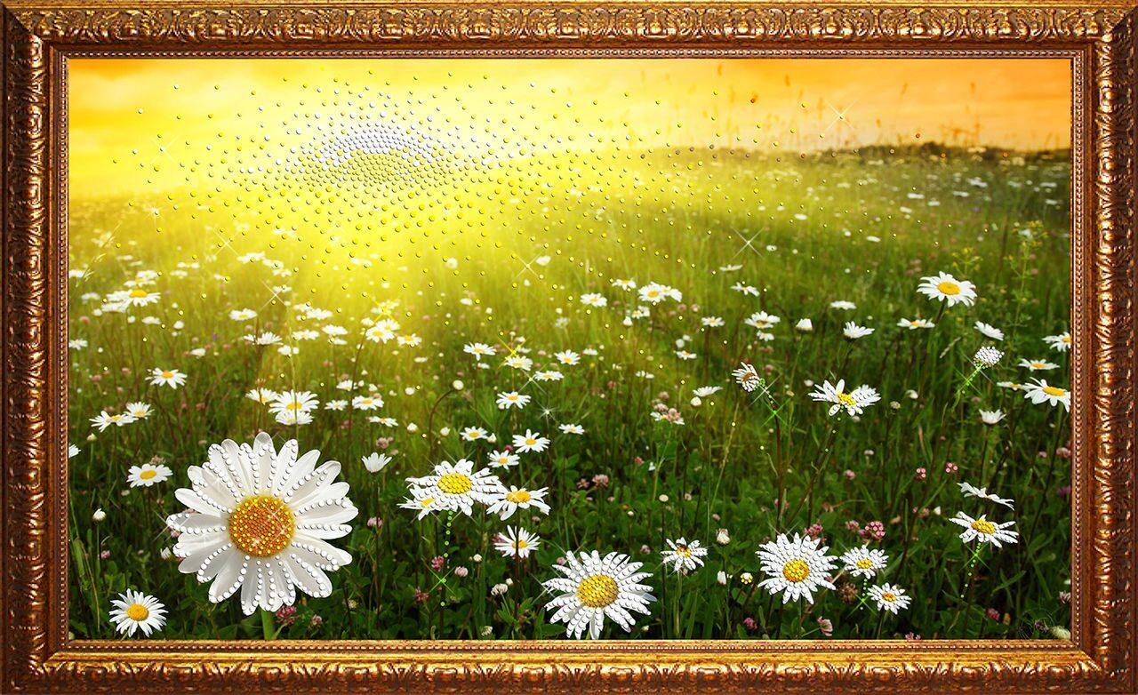 Картина  Swarovski Ромашковое поле